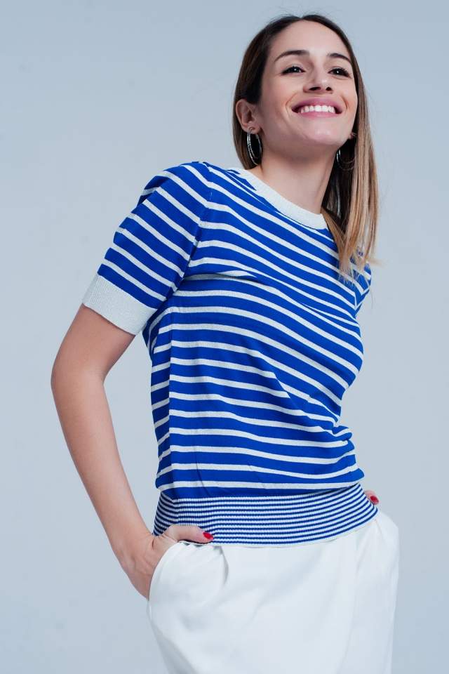 Short Sleeve Blue Striped Glitter Sweater