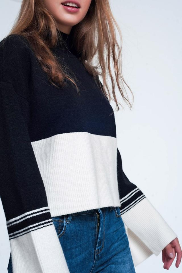 Black turtleneck sweatshirt